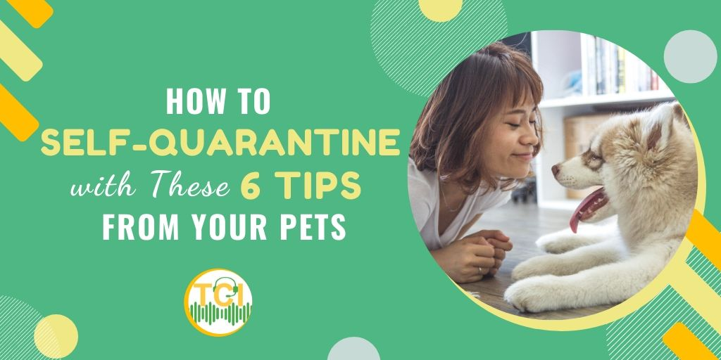 How to Self-Quarantine with These 6 Tips From Your Pets